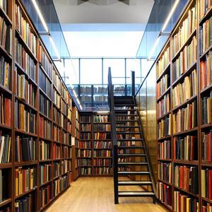 Библиотеки Черниговки